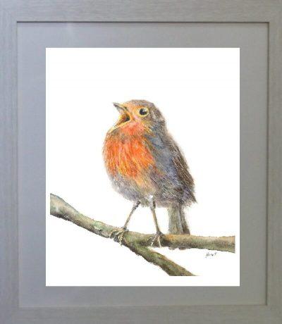 painting, Christmas, robin, singing, Ireland