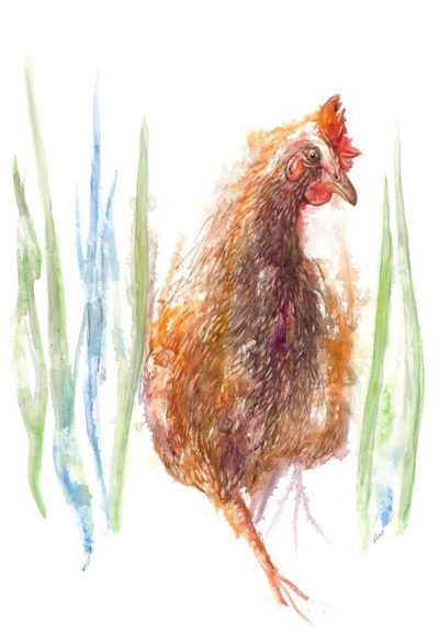 hen, chicken, painting, long grass, dinner.