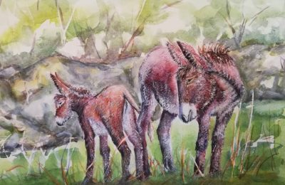mare, foal, mare and foal.
