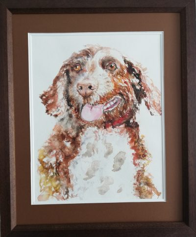 pet portrait spaniel