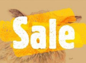 Woolley Eyes sale